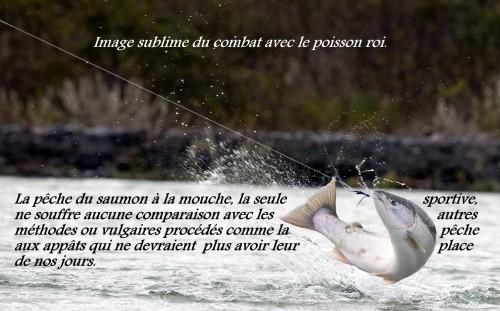 pêche du saumon en Bretagne, saumon à la mouche, saumons bretons, mouches bretonnes