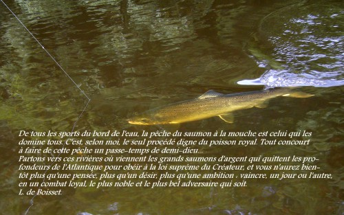 L. de Boisset.jpg